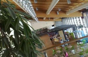 Aeropuerto de Treviso: Salidas de vuelos